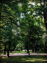 13_Clara-Zetkin-Park